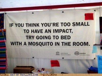 moustique politique