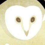 Illustration du profil de COHEN